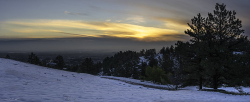 boulder chautauqua colorado pinusponderosa ponderosapine cloud clouds dawn morning morninglight pines snow springsnow sun sunrise