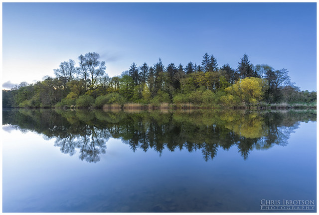 Reflections, River Bann