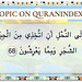 Browse Bee Quran Topic on http://Quranindex.info/search/bee  #Quran #Islam