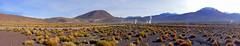 Tatio Geysir | Geysers | Tour | San Pedro de Atacama | Chile | Südamerika | South America