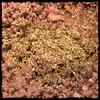 #GroundBeef #Beef #Peas #Homemade #CucinaDelloZio - if you don't have fresh oregano add dried