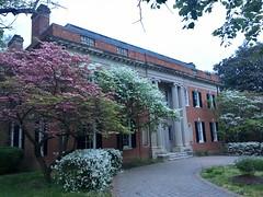 Mansion with dogwood and azaleas, Massachusetts Avenue NW, Washington, D.C.