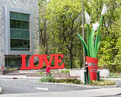 LOVE Sculpture (2016) by Patrick Weisel, Bloomfield, Staten Island, New York City