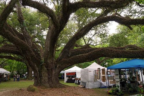 melroseplantation nationalhistoriclandmark louisiana festival oak tree moss folklife crafts arts branches