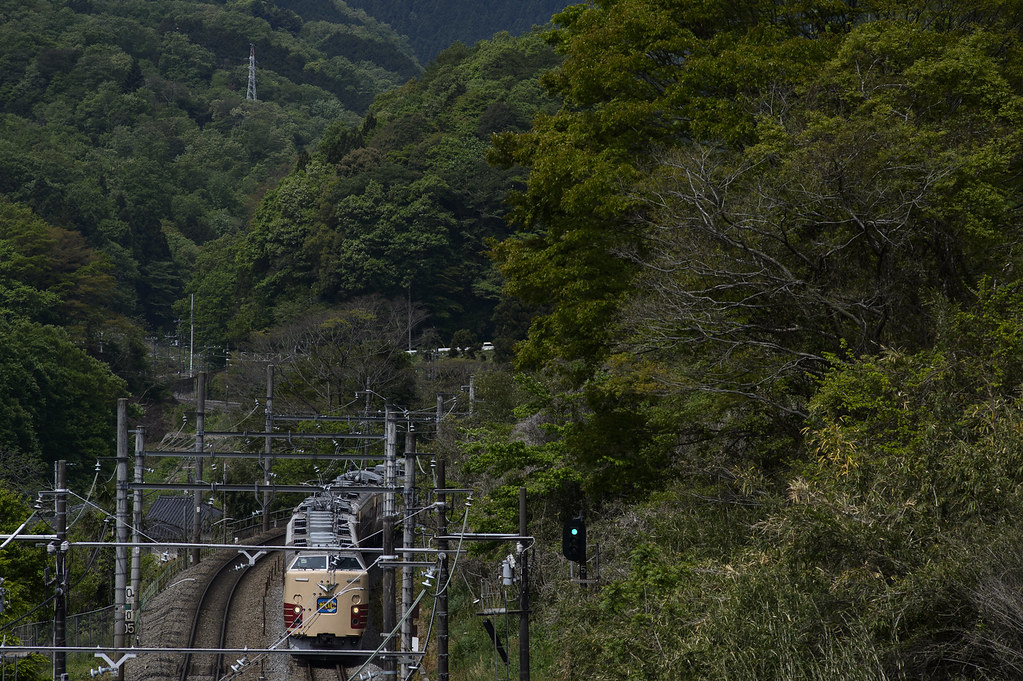 新緑を行く国鉄特急色