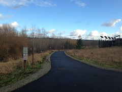 North Creek Trail at the UW Bothell Wetlands