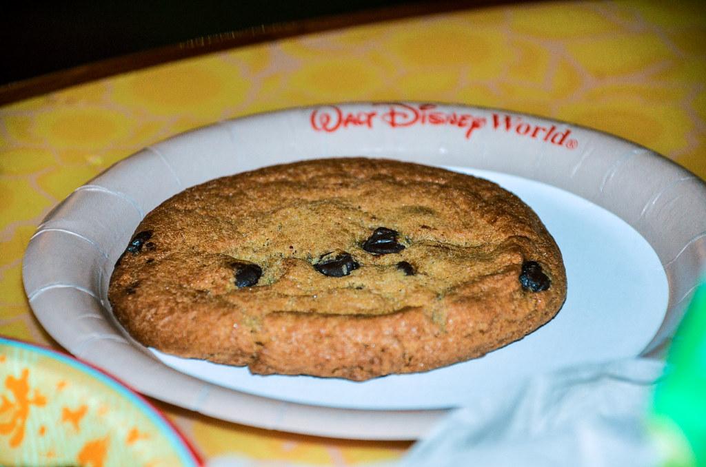 Chocolate chip cookie Sunshine Seasons