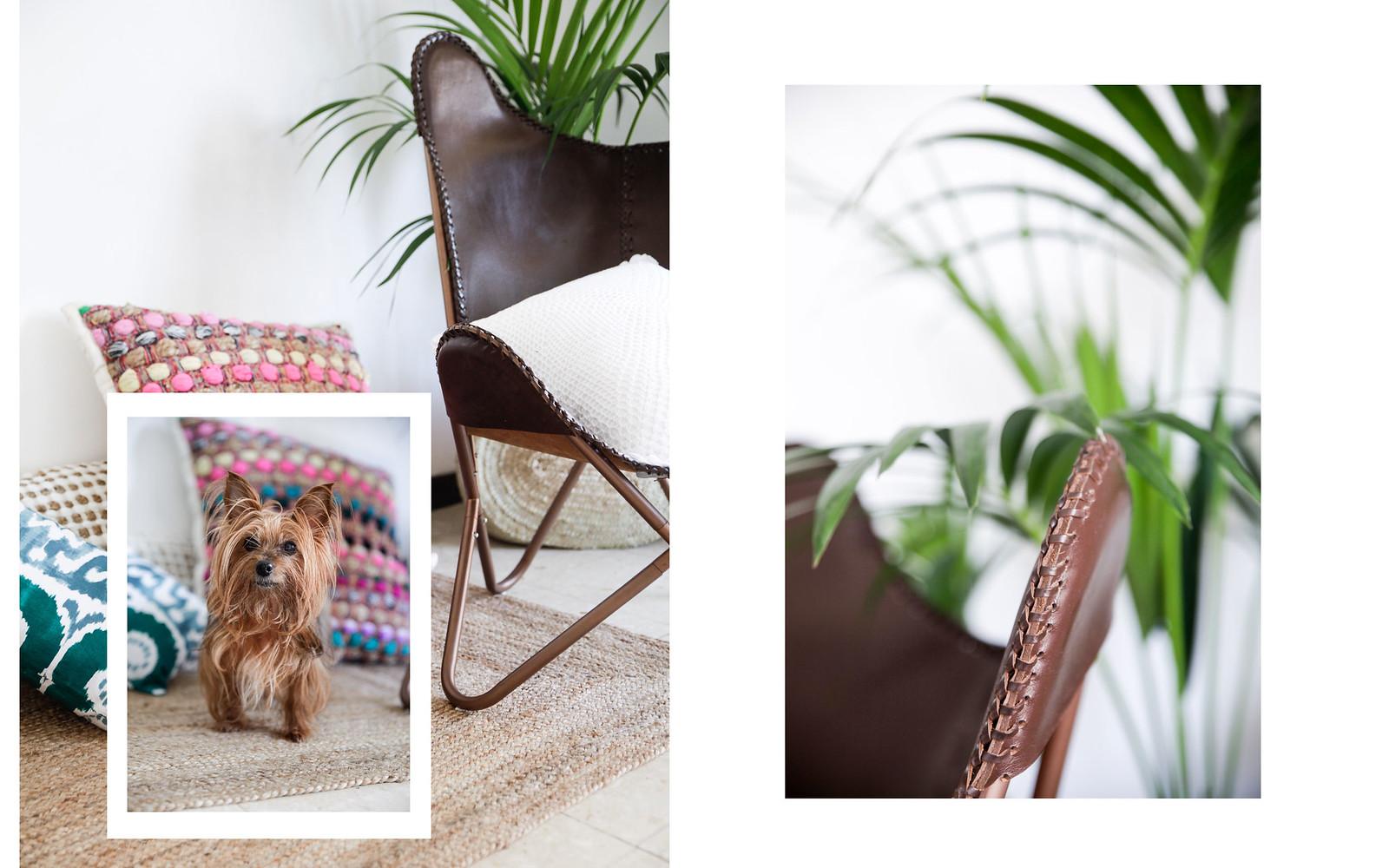 010_calma_house_ideas_decoracion_casa_cojines_bonitos_barcelona_boho_deco_theguestgirl_house_aloha_style_palmeras_casa_interior