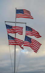 Five American Flags