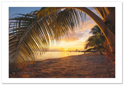 caribbean sunset landscape seascape sea nature palm palmtree colorfulsunset beach sand horiabogdan islamujeres mexico