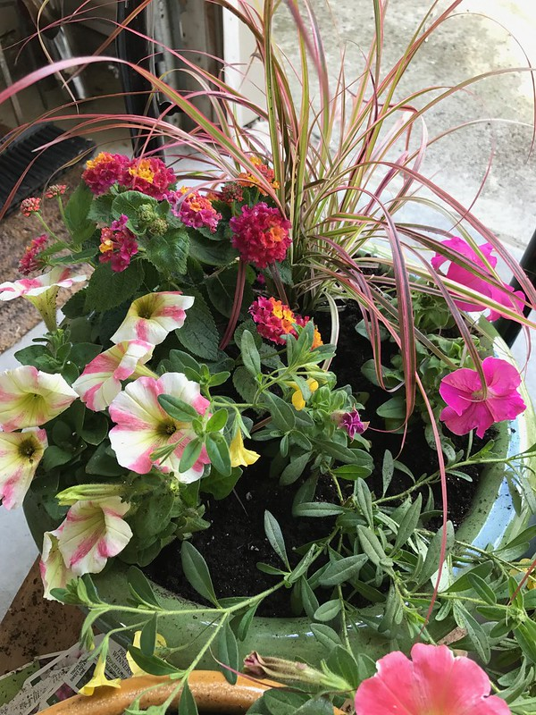 2017 Flower Containers