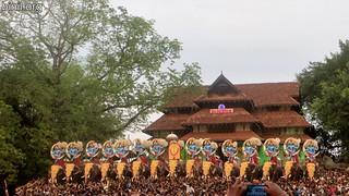 Thrissur Pooram 2017 -11