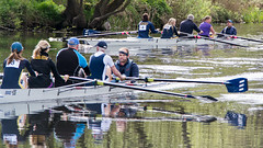 4228 rowing