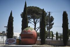 Bono's Historic Orange, Route 66, California