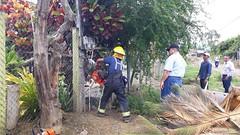 Policías y Bomberos municipales hacen cumplir línea de fábrica en La Aurora
