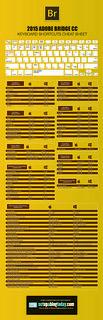 Hola: Una infografía