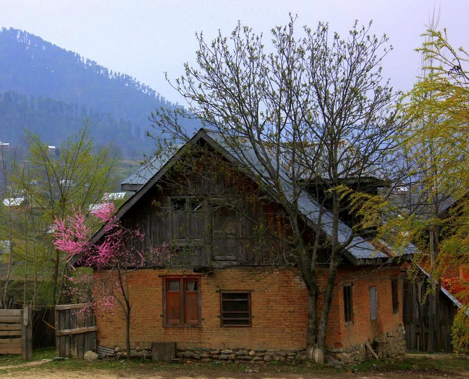 kokernag spring is a great time for visiting since it has less tourists