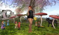 Fairytale Wonderland