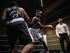 Boxing Event 2017