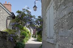 Saint-Dyé-sur-Loire (Loir-et-Cher).
