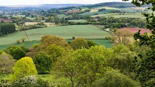 parkland farmland killerton estate farm fields cultivation patchwork trees outdoor landscape devon england