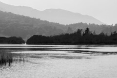 Elter Water, early evening | Elter Water and Loughrigg Tarn-1