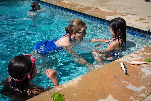 Christie shark, Nikon D600, AF-S VR Zoom-Nikkor 24-85mm f/3.5-4.5G IF-ED