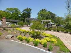 Planting Fields Arboretum - Oyster Bay (62)