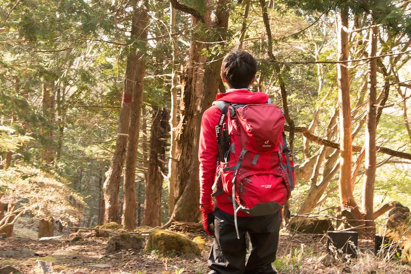 20150510-皇海山-0142.jpg
