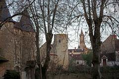 Villeloin-Coulangé (Indre-et-Loire)