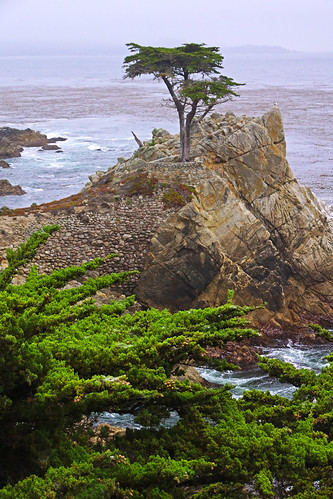 usa california 17miledrive