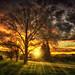 Symphony of light by Kevin_Jeffries