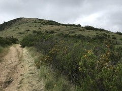 Hiking Carmel Valley Ranch to Garland Park