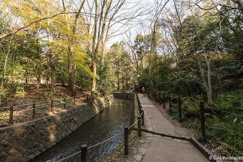 Valle Todoroki de Tokio