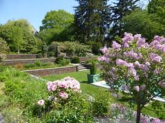 Planting Fields Arboretum - Oyster Bay (36)