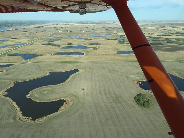 Semi-permanent wetlands are full.USFWS