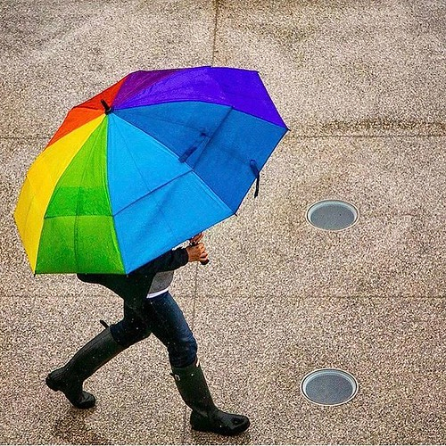 Color on a rainy day.