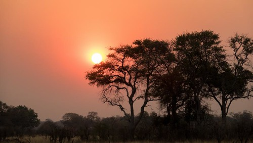 holiday-packages-hotels-travel-agency-african-sunset