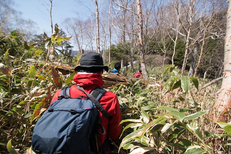 20150510-皇海山-0472.jpg