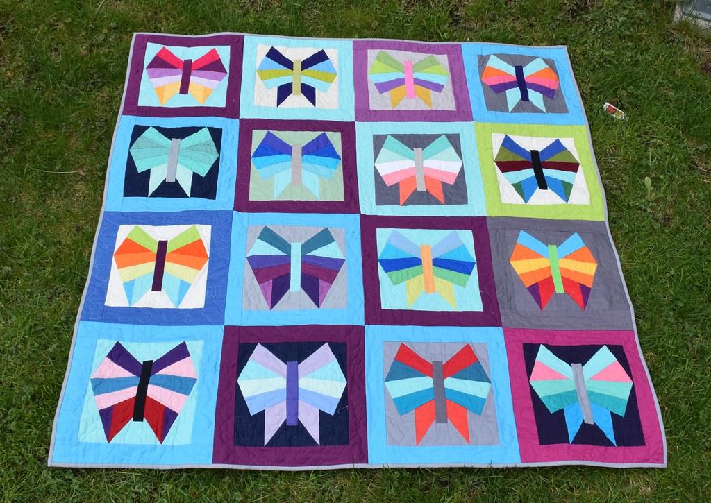 final shot modern butterfly