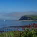 Small photo of Glenarm Bay