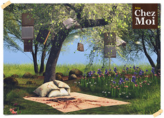 Wonder Tree CHEZ MOI