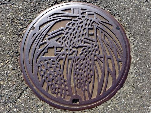 Kariwa Nigata, manhole cover (新潟県刈羽村のマンホール)
