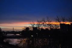 Loire | Dawn