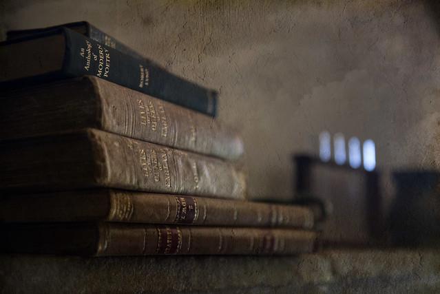 isaac newton's books