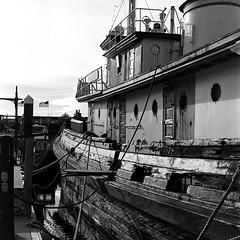 Old Tug Boat at Bremerton Marina