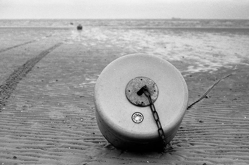 FILM - Beached-2