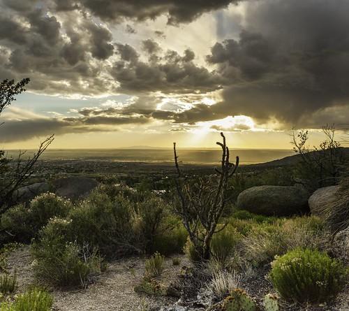 albuquerque new mexico sunset rain storm high desert sandia mountains tram