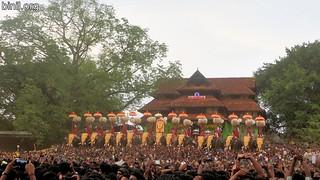 Thrissur Pooram 2017 - 08
