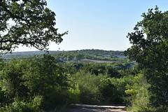 View southeast